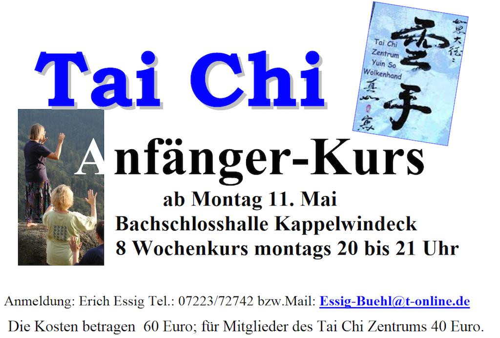 Tai Chi Anfängerkurs Mai 2015